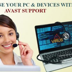 Avast Support