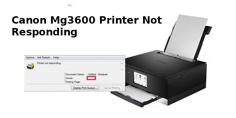 Canon Mg3600 Printer Not Responding